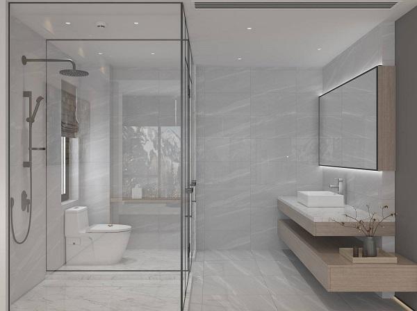 Gạch ốp tường wc sang - xịn 4